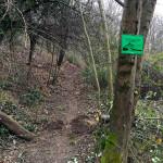 il sentiero Bellavista nasce dalla pulizia di un sentiero già esistente che aggira la frazione di Tetti Rocco